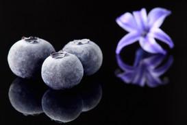Blueberries & Flower