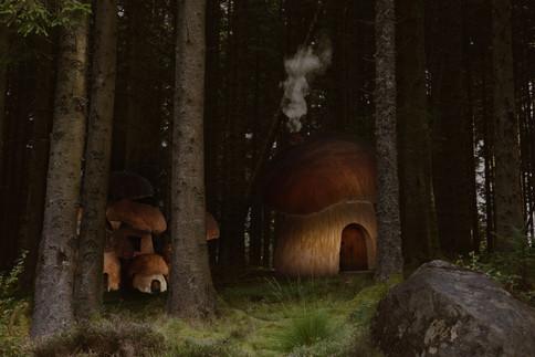 Mushroom city.jpg