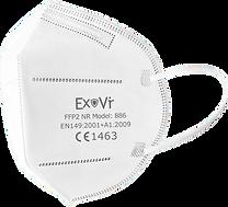 ExVir2.png