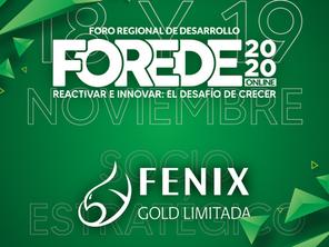 Participa del Foro Regional de Desarrollo 2020 online y conoce más sobre nuestra empresa Fenix Gold