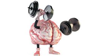 Hvordan trene hjernen?