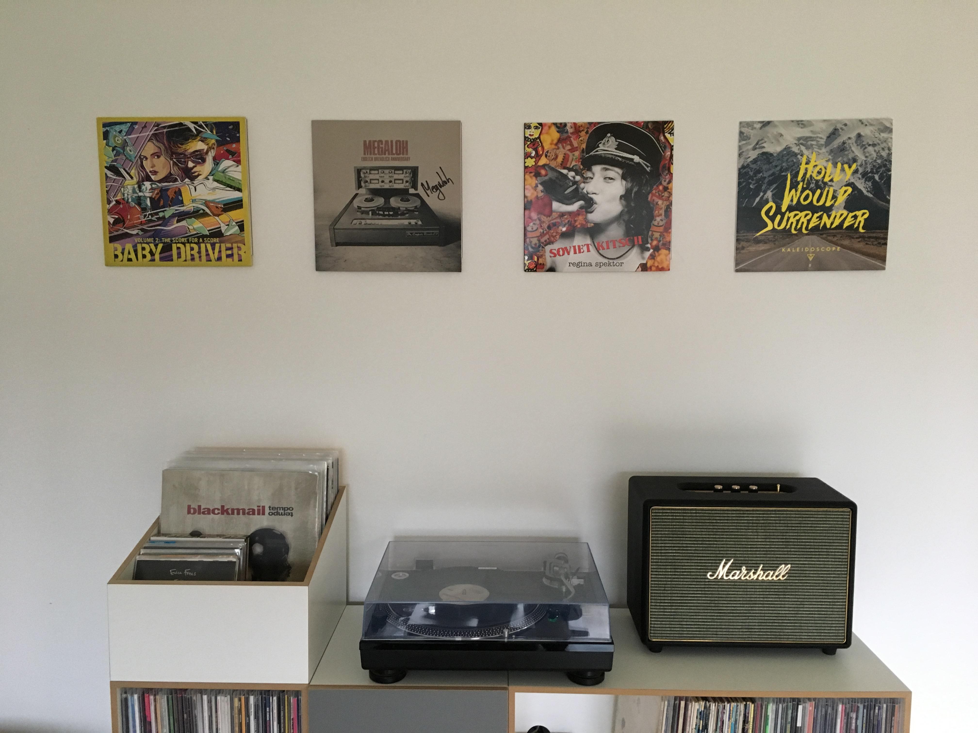 Vinyl ophangen, Ophangsysteem voor Vinyl