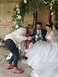 CRYSTAL AMOR EVENTS WEDDING ARCH