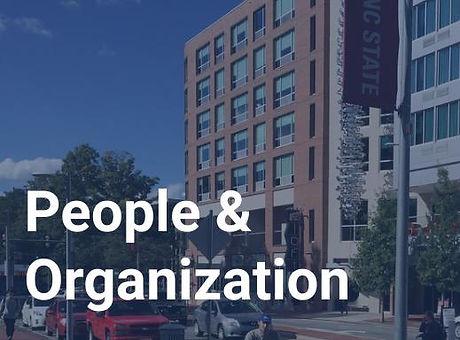 People & Organization service image.jpg