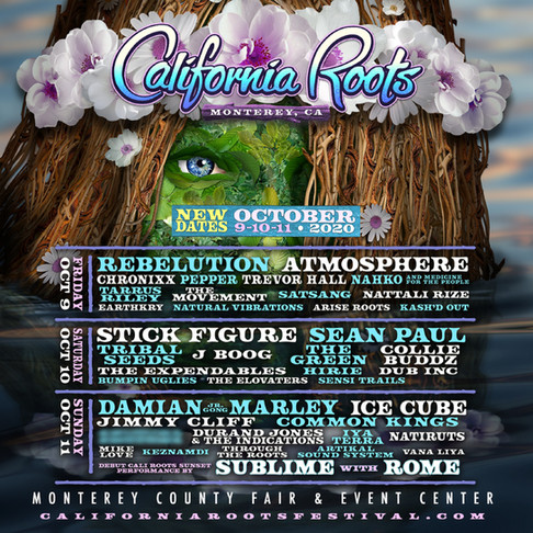 """Watch California Roots """"Can't Stop The Music"""" online festival"""