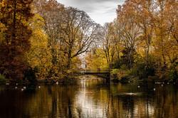 Goldene Brücke im Hofgarten