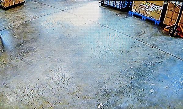 Forklift Standar Camera W.jpg