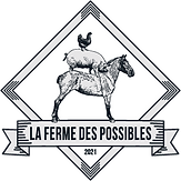 Logo_FDP_WEB_300X300.png
