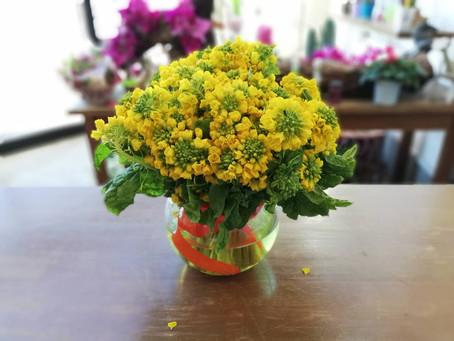 暖かくする花
