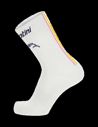 Santini TREK-SEGAFREDO 2020 - NIBALI - SUMMER SOCKS - Kerékpáros zokni