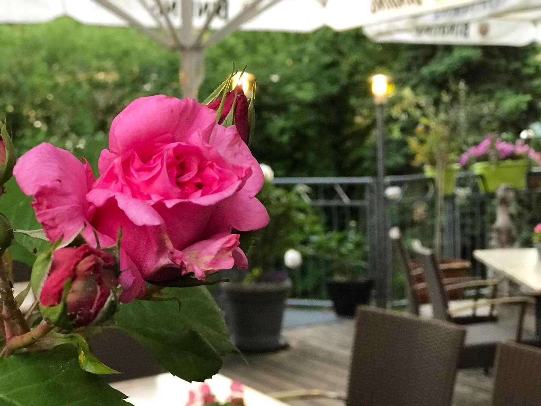Sonnenterrasse | Gasthof zur Krone
