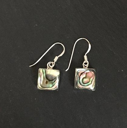 Paua Shell Square Earrings