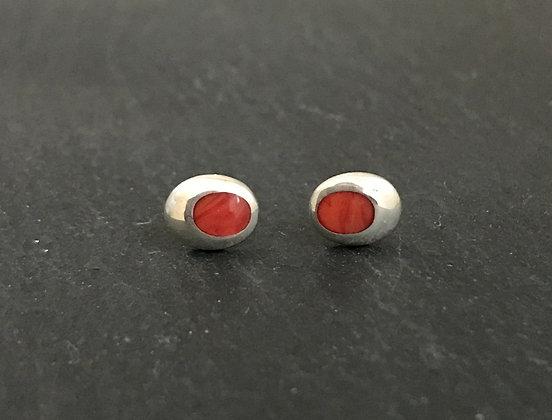 Oval Coral Stud Earrings