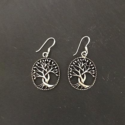Oval Silver Tree Earrings