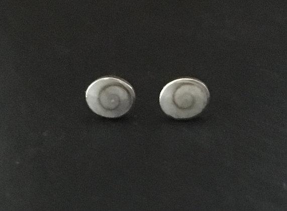 Shiva Shell Oval Stud Earrings