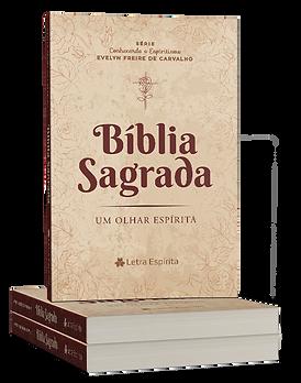Bíblia Sagrada - ESTANTE ESPÍRITA.png