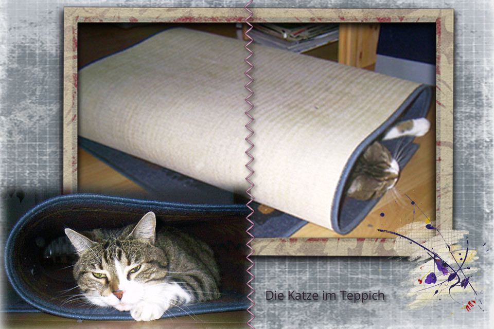 Die Katze im Teppich