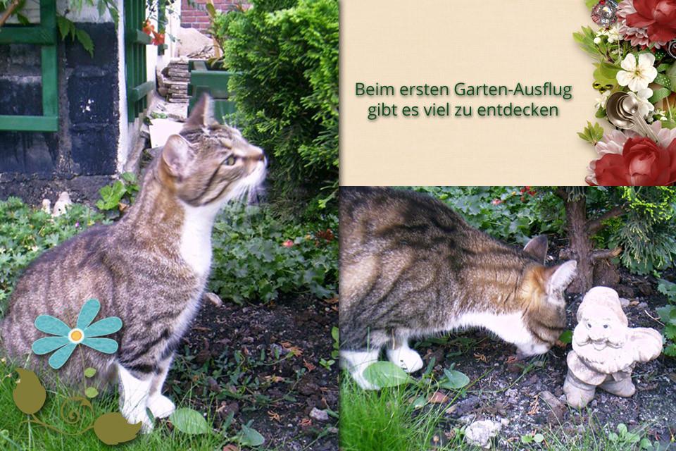 Beim ersten Garten-Ausflug gibt es viel zu entdecken