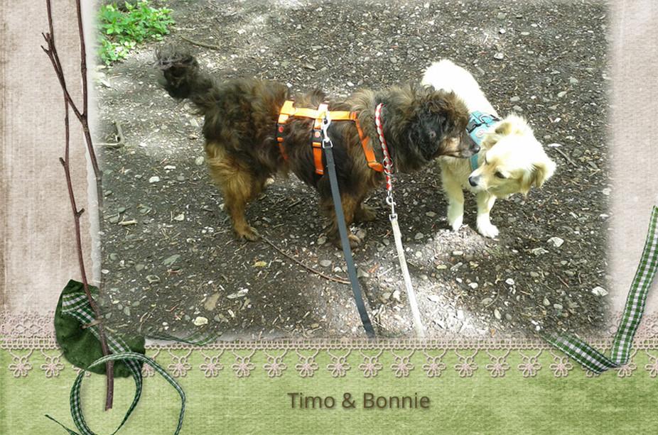 Timo und Bonnie