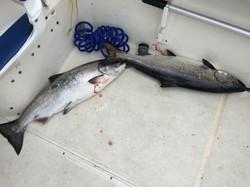 Fishing charters nanaimo