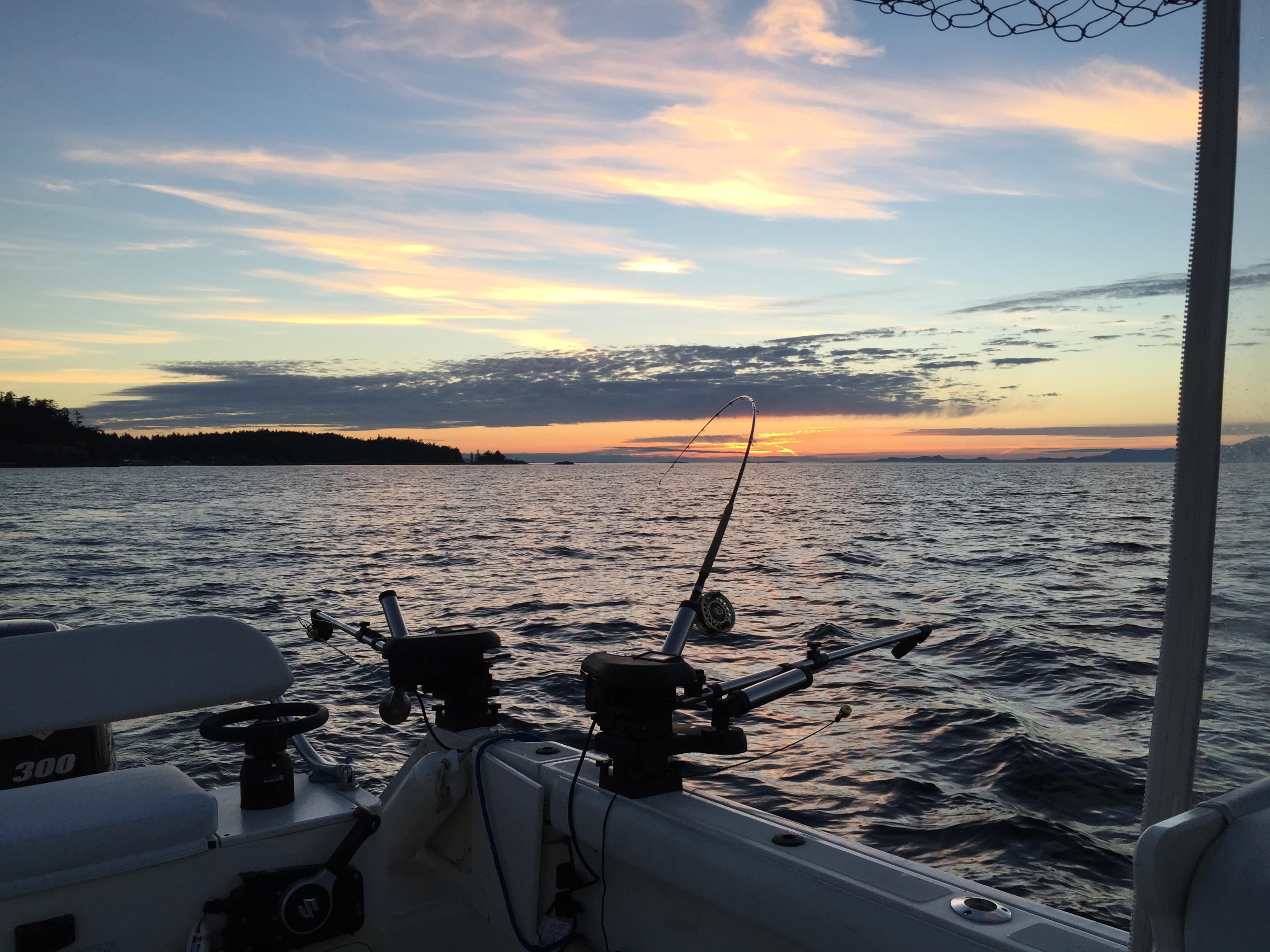 nite bite nanaimo fishing charters