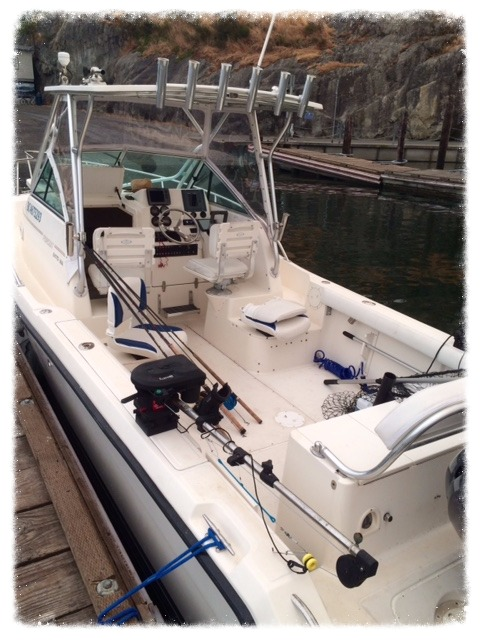 pursuit 2470 fishing charter boat