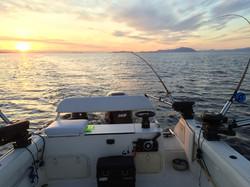 Pursuit boat Nanaimo fishing charter