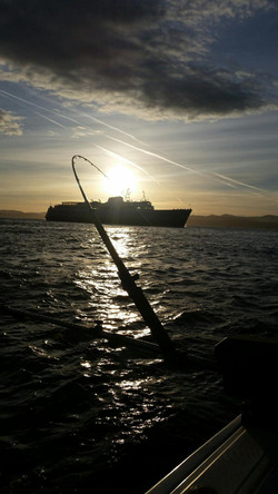 Coho Vessel Fishing Charter In Victoria