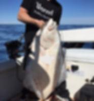 halibut fishing charters port renfrew, nanaimo fishing charters halibut