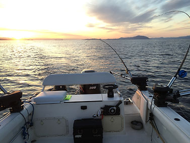 Pursuit 2470 Boat Nanaimo fishing charters