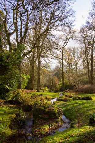 Batford Arboretum
