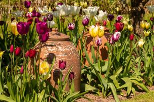 Stockton Bury Gardens, Nr Leominster