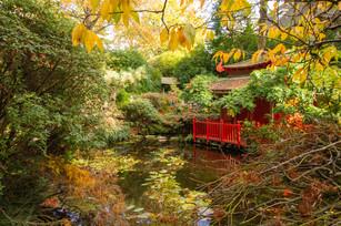 Japanese Garden, Compton Acres