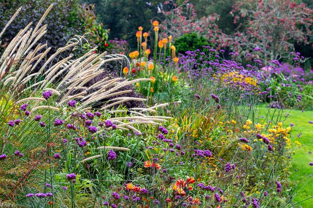 Hidden Valley Gardens, Fowey