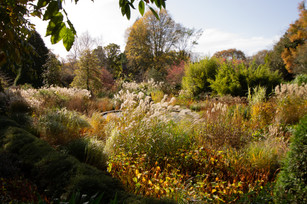 Knoll Gardens Dragon Pond