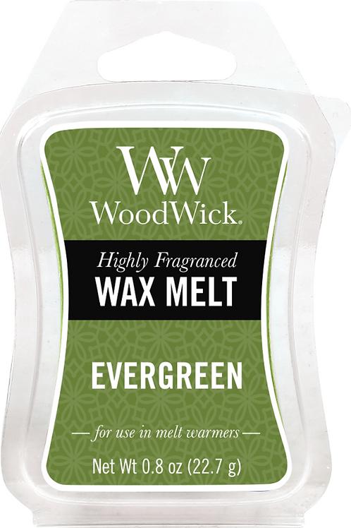 WW Evergreen Melt