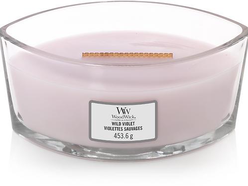 WW Wild Violet Ellipse