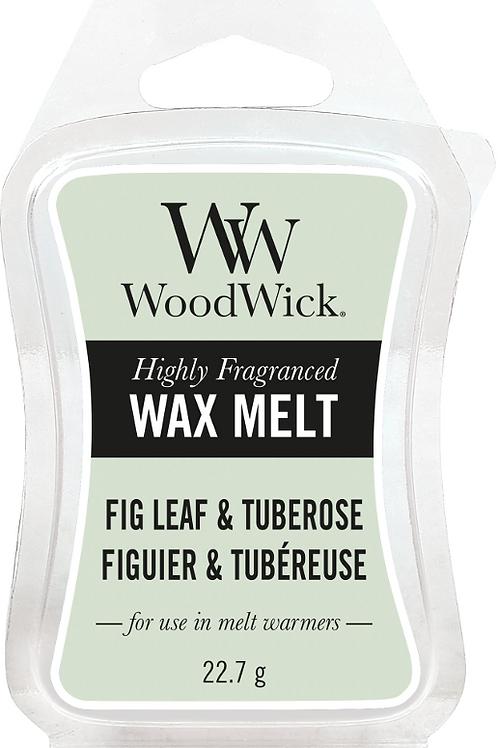 WW Fig Leaf & Tuberose