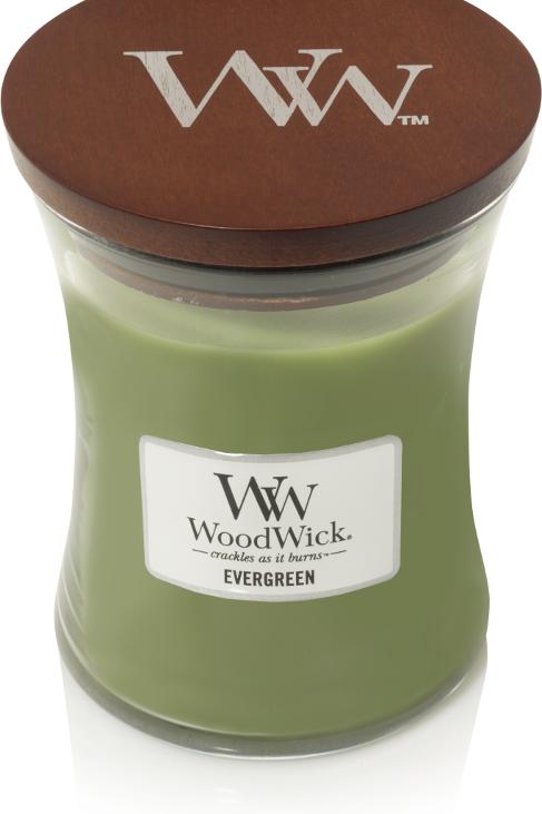 WW Evergreen Medium