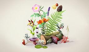 botanique_1440x850.jpg