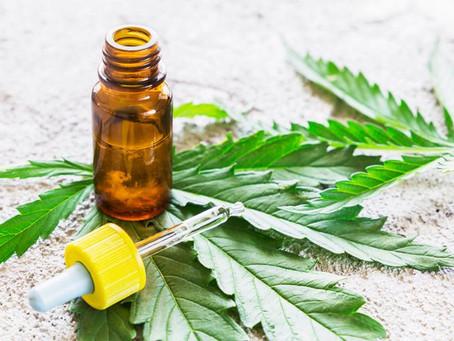 La santé ça n'a pas de prix : Le Cannabis thérapeutique