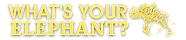 Whats-Your-Elephant_logo.png