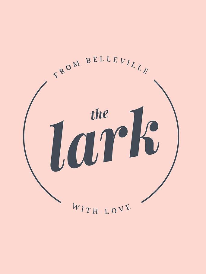 Copy of Lark New Logo-3.png