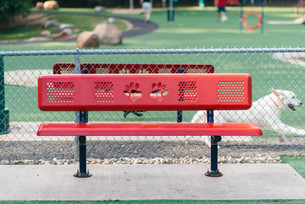 Newton Dream Dog Park-GA-Specialty Bench
