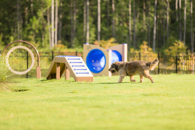 Rivertown Dog Park-FL-Dog Play Component