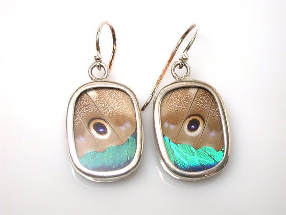 Tan and Teal Butterfly Earrings