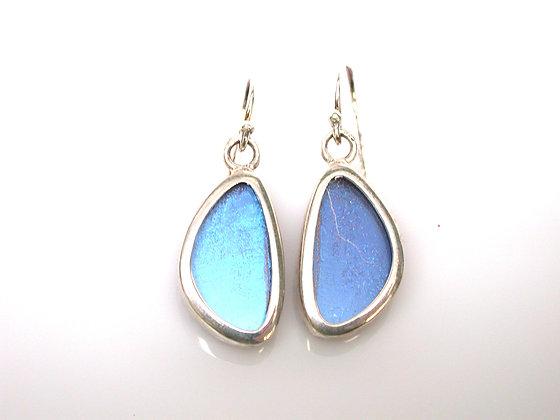 Blue Morpho Earrings