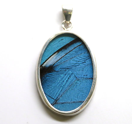 Large Oval Butterfly Pendant