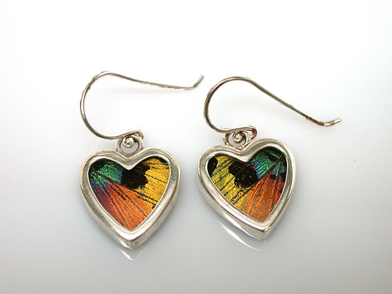 Extra small Sunset moth heart earrings