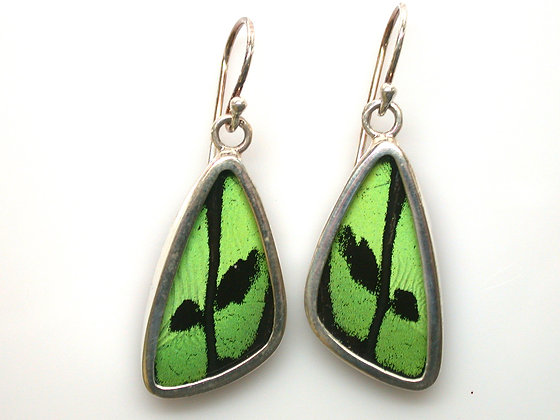 Green and Black Butterfly Earrings